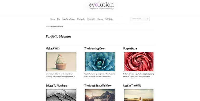evolution-galery