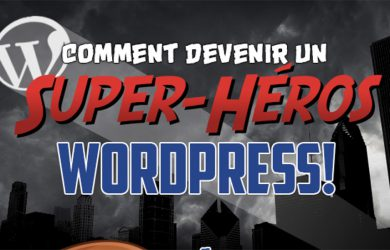 infographie wordpress