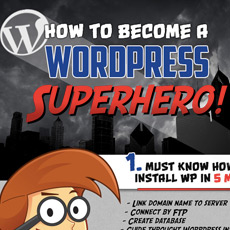 wordpress infography