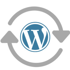 wordpress hide updates