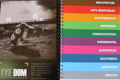 thème wordpress pour annuaire