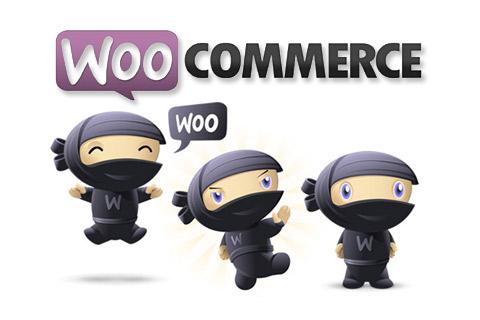 thèmes wordpress pour e-commerce