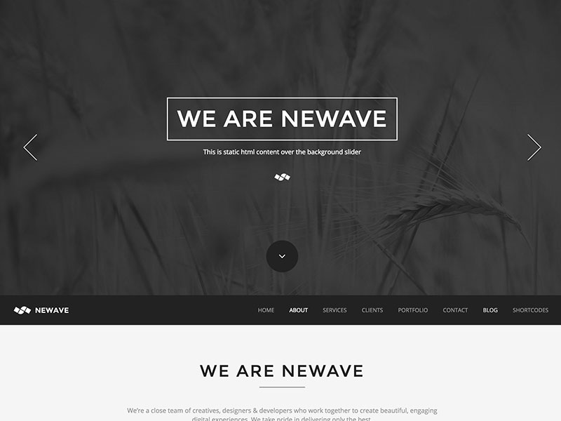 newave one pager