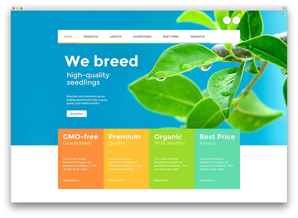 agrofields-organic-food-theme