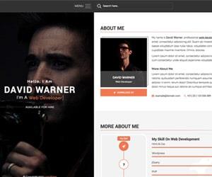 thème wordpress blog personnel