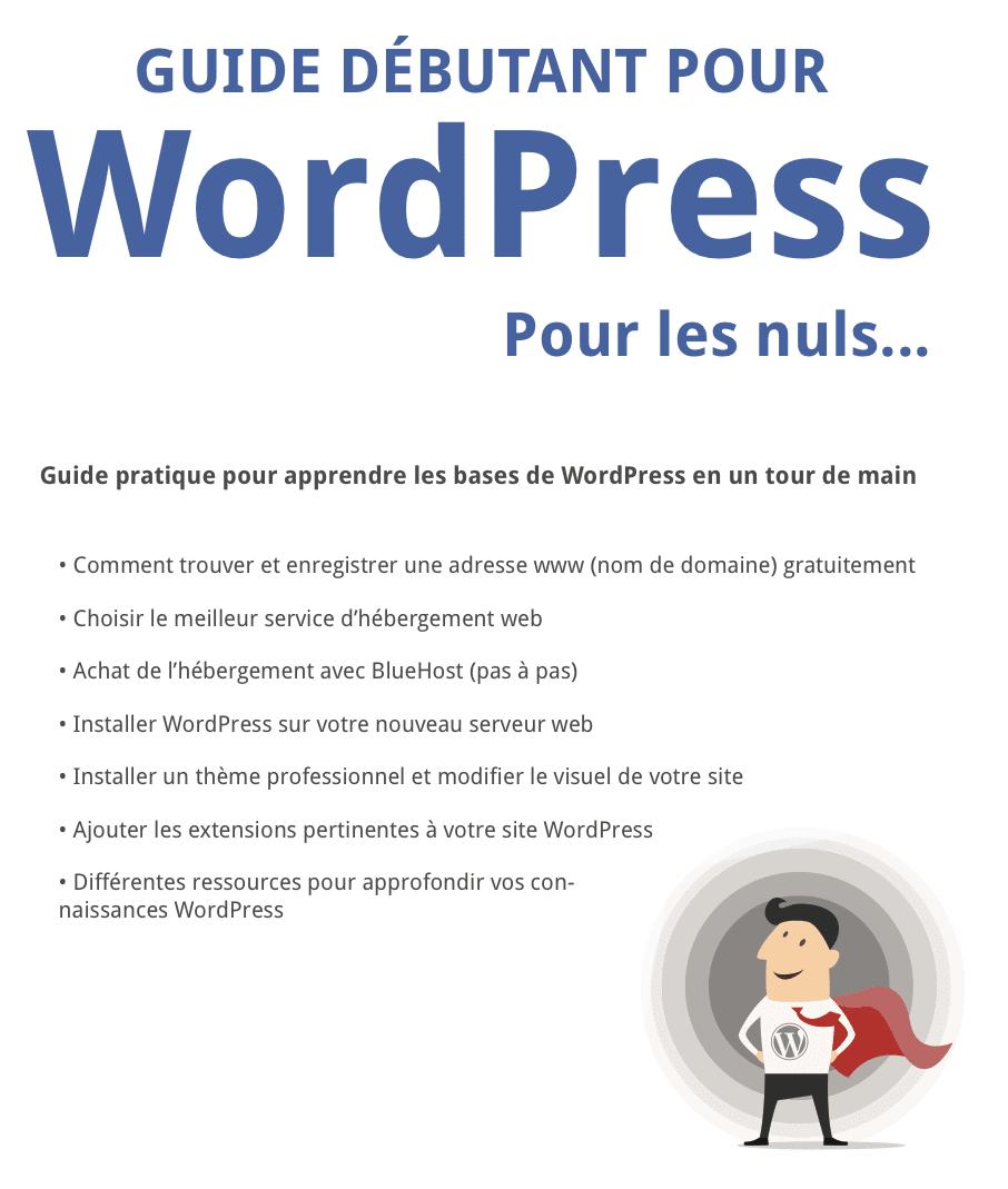 pdf WP Pour les Nuls screenshot1