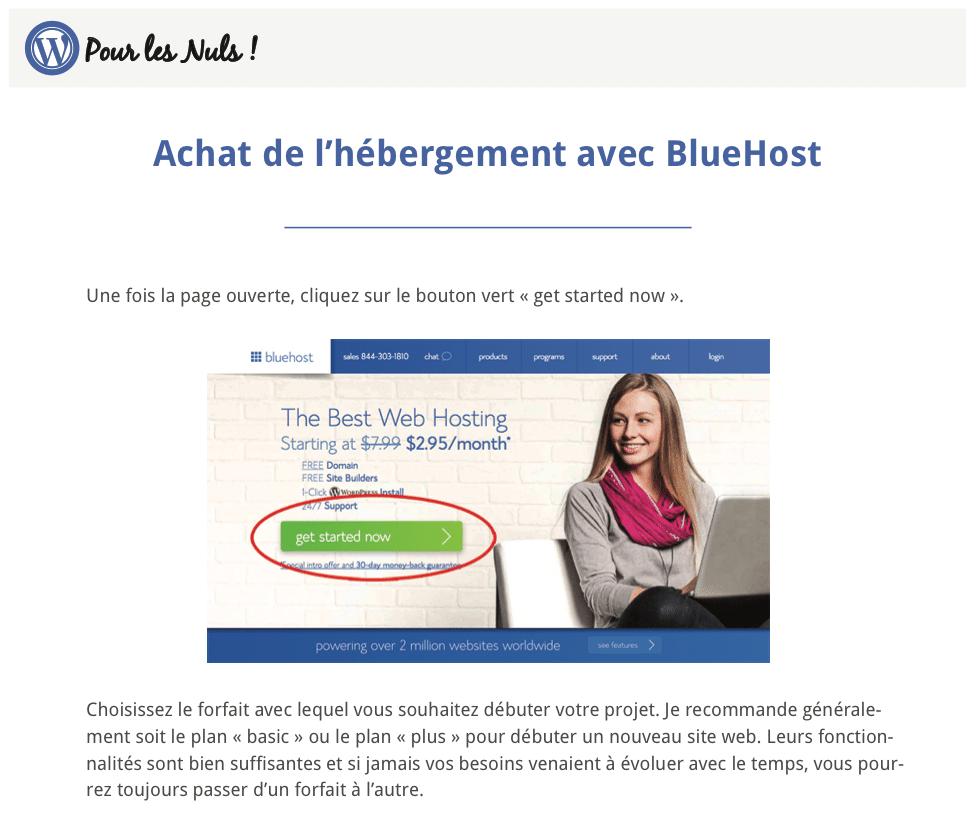 pdf WordPress Pour les Nuls screenshot3
