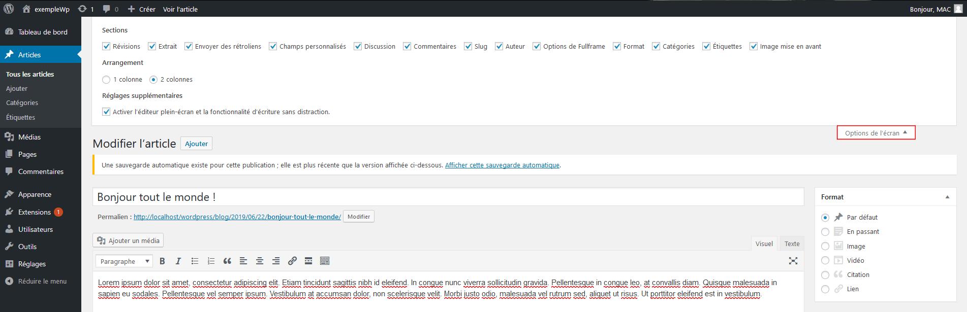 Option de l'écran dans WordPress