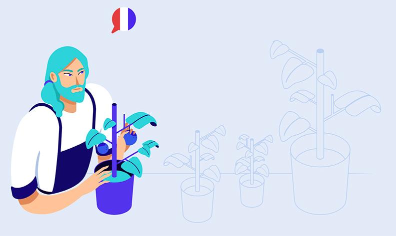 kinsta hébergeur WordPress français